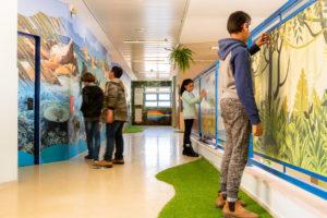מסדרון בית ספר עידית אבו